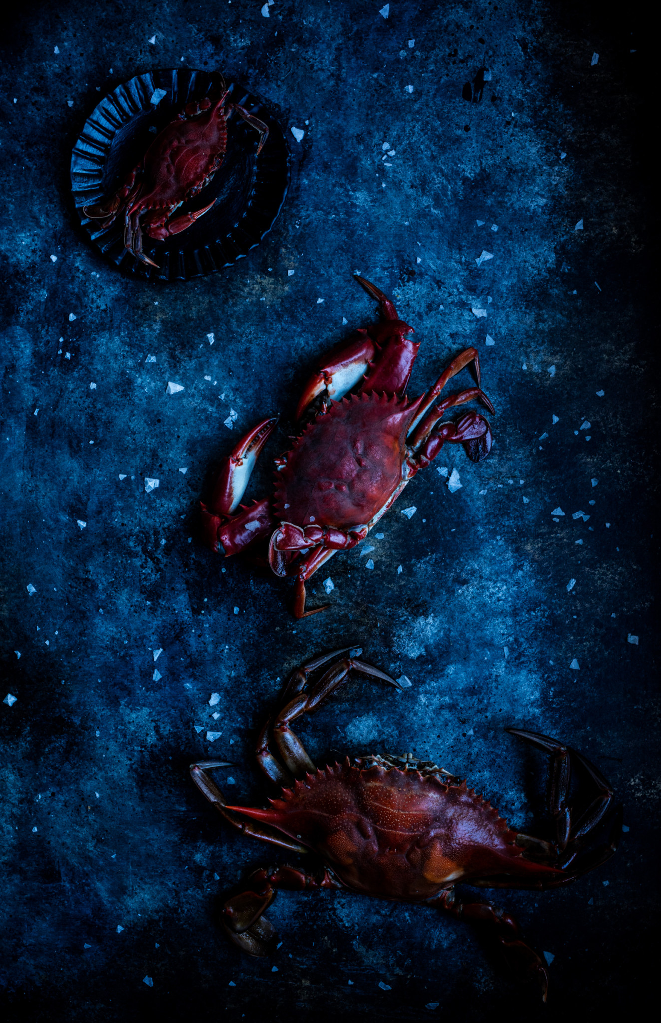 beautiful food photo of crabs styled on board