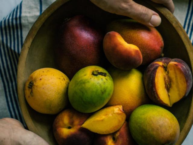 hands holding mangos