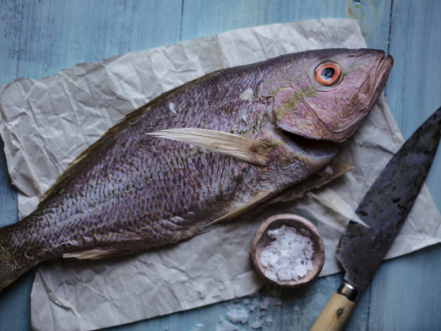 food styling image of fresh fish with knife