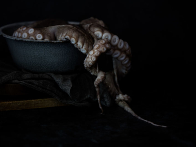 beautiful food photo of octopus crawling out of pan